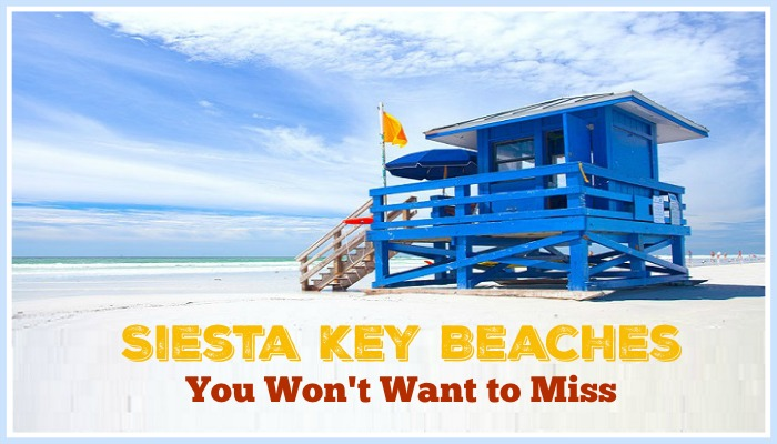 Siesta Key Beaches You Won't Want to Miss